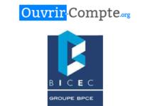 contact bicec